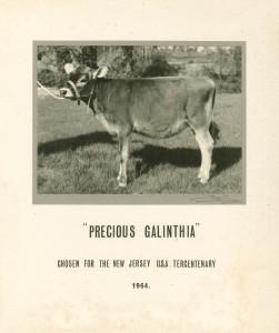PRECIOUS GALINTHIA 1964